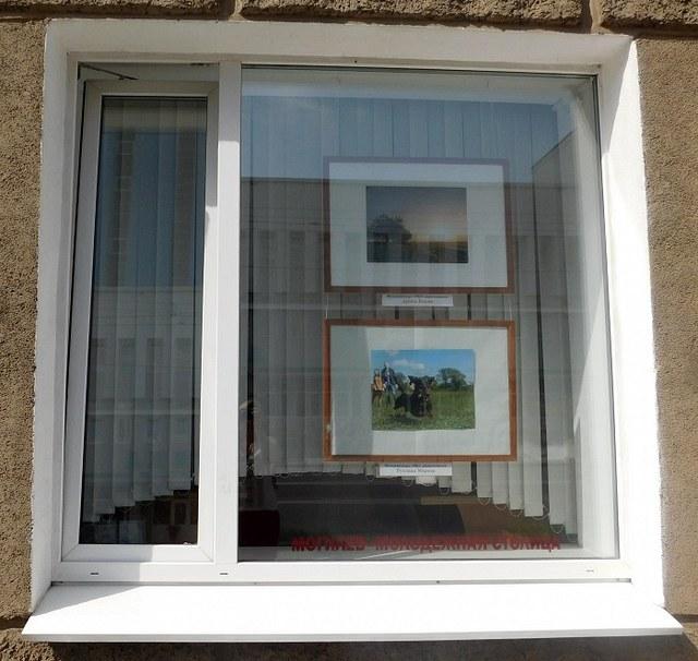 Новая выставка в окнах центральной библиотеки открылась в Могилёве