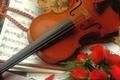 Могилевчан приглашают к участию в конкурсе скрипачей и виолончелистов им. Солдатова